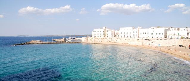 Organi fiavet federazione italiana associazioni imprese viaggi e turismo - Agenzie immobiliari gallipoli ...
